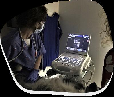 Diagnòstic per imatge